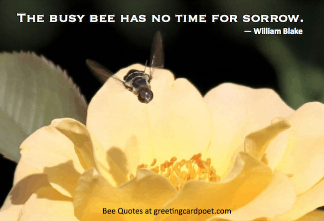 Bee-quotes