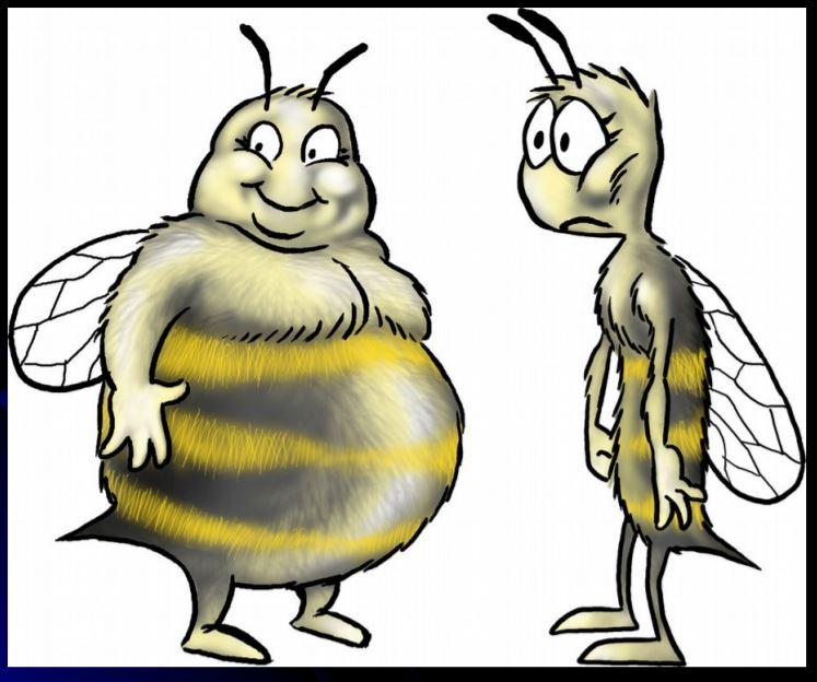 Fat Skinny Bees